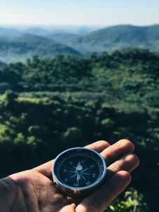 Photo by Supushpitha Atapattu on Pexels.com